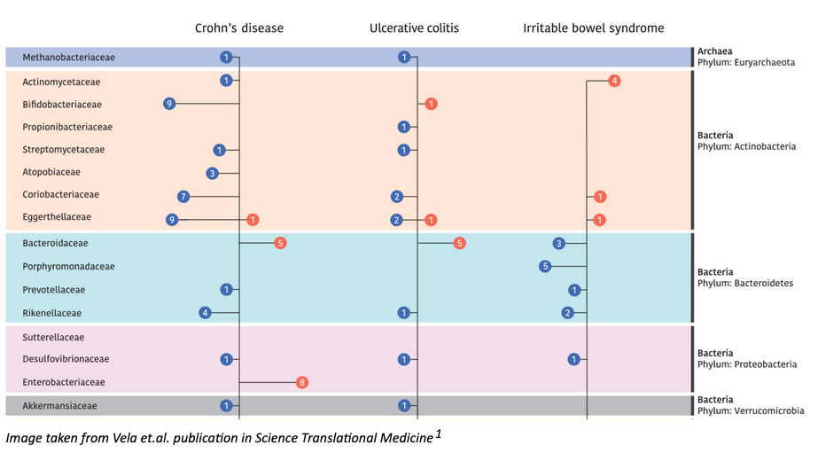 Gut Microbiota Composition and Functional Changes in Inflammatory Bowel Disease and Irritable Bowel Syndrome